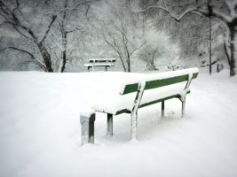 green bench with snow at park with PEDOC Power outdoor pedestal